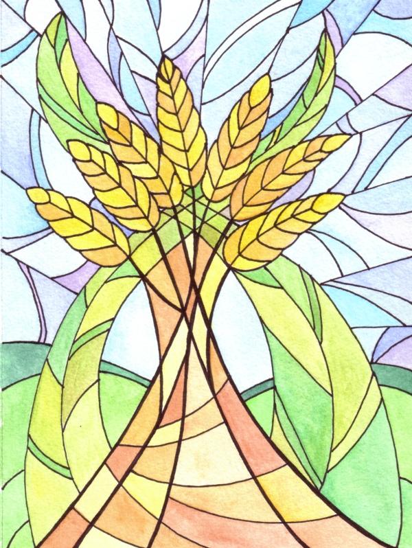 Harvest Wheat (c) Angela Porter 2010