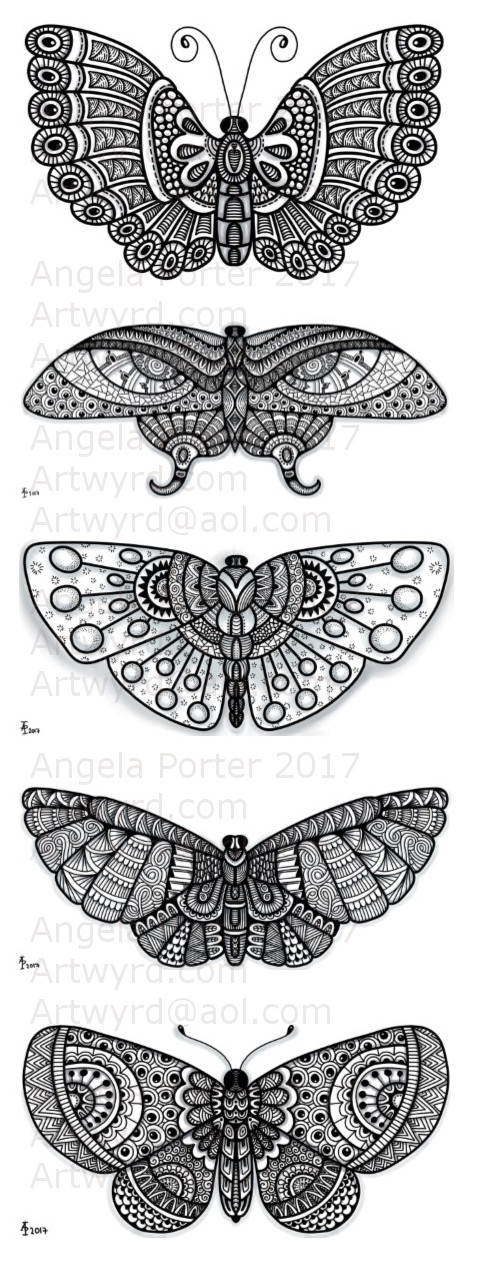 FourPatternedButterflies_AngelaPorter_17June2017