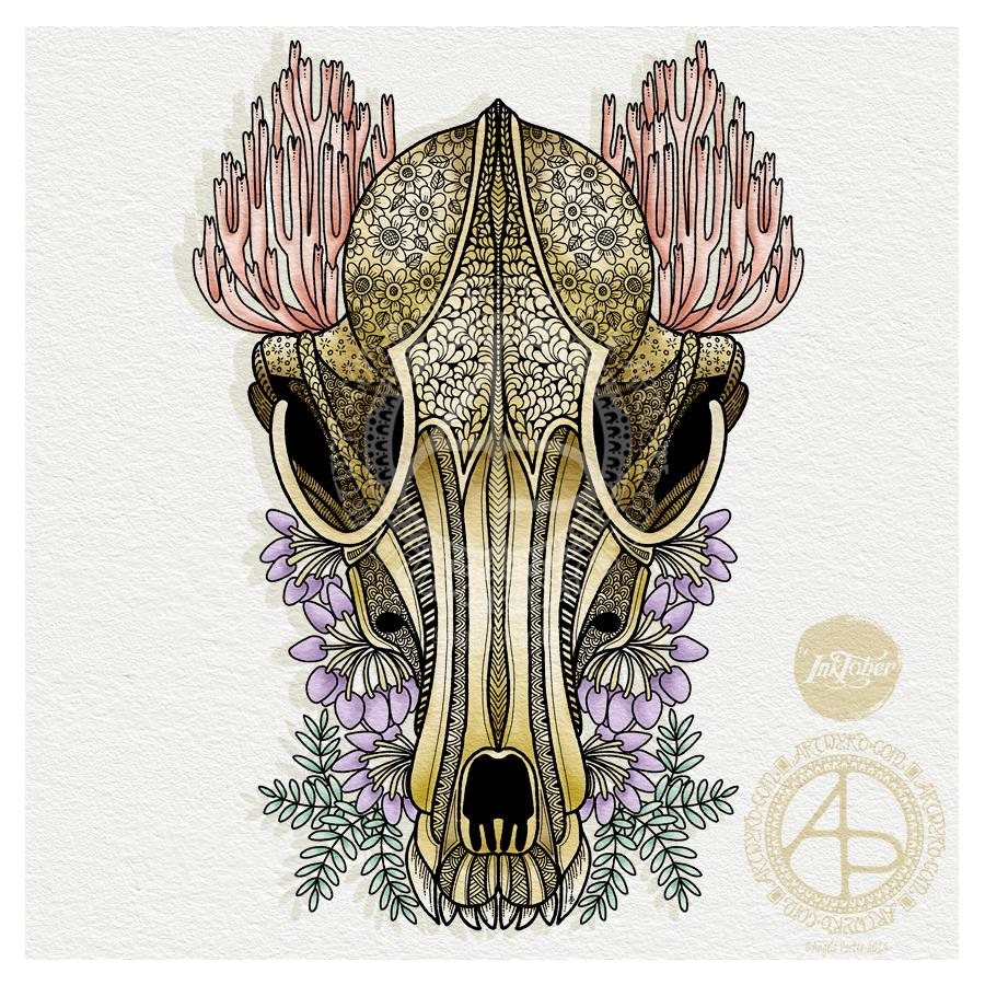 Fox skull and Ramaria © Angela Porter | Artwyrd.com
